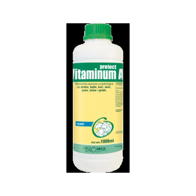 Vitaminum A Protect 1 l